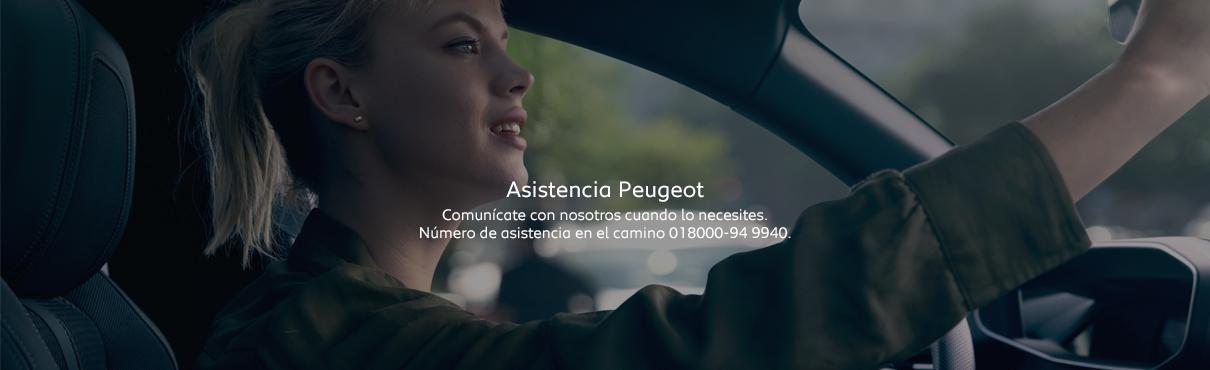 Asistencia en el camino